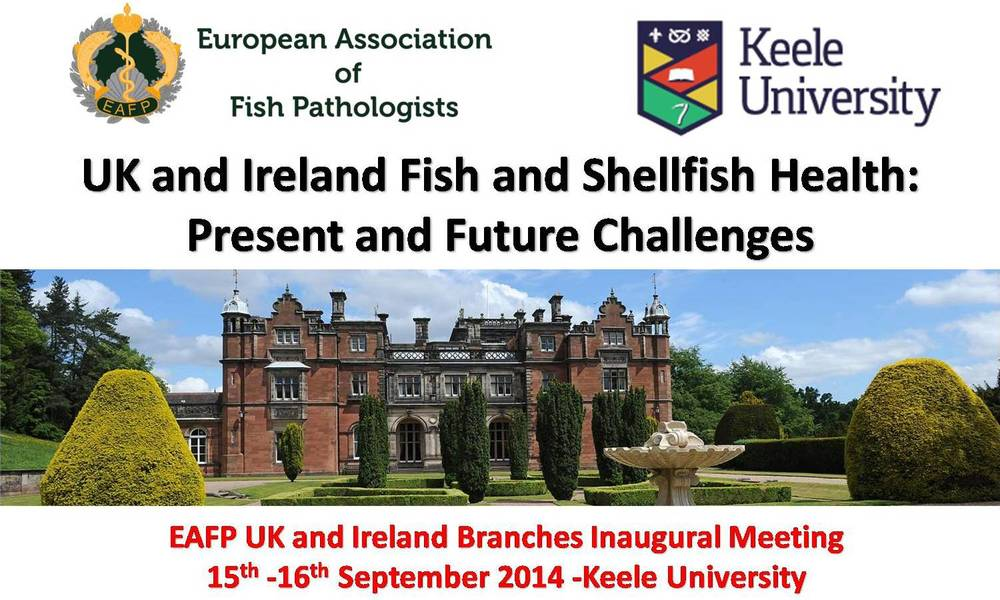 Uk & Ireland EAFP meeting