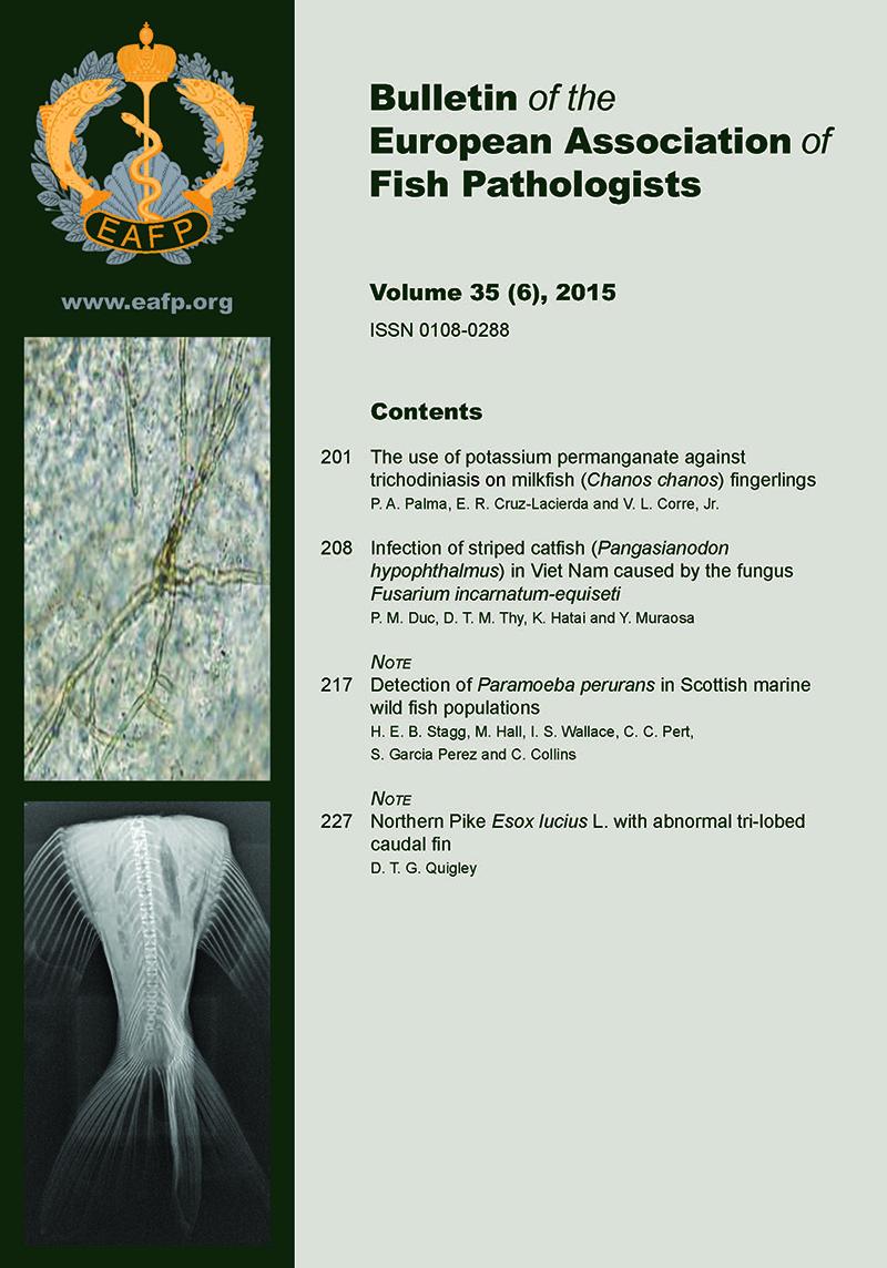EAFP Bulletin 35(6) Cover