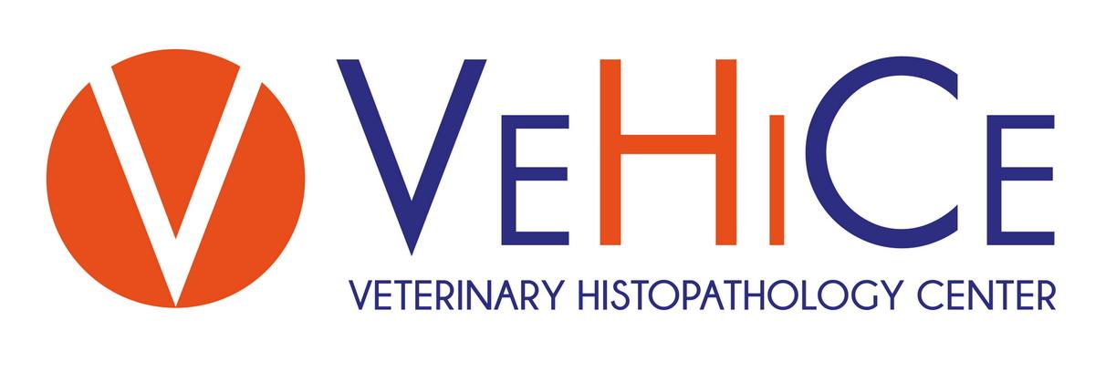 VeHiCe